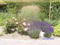 Gartenanlage_und_Pflanzungen_06