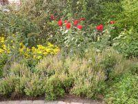 Gartenanlage_und_Pflanzungen_09